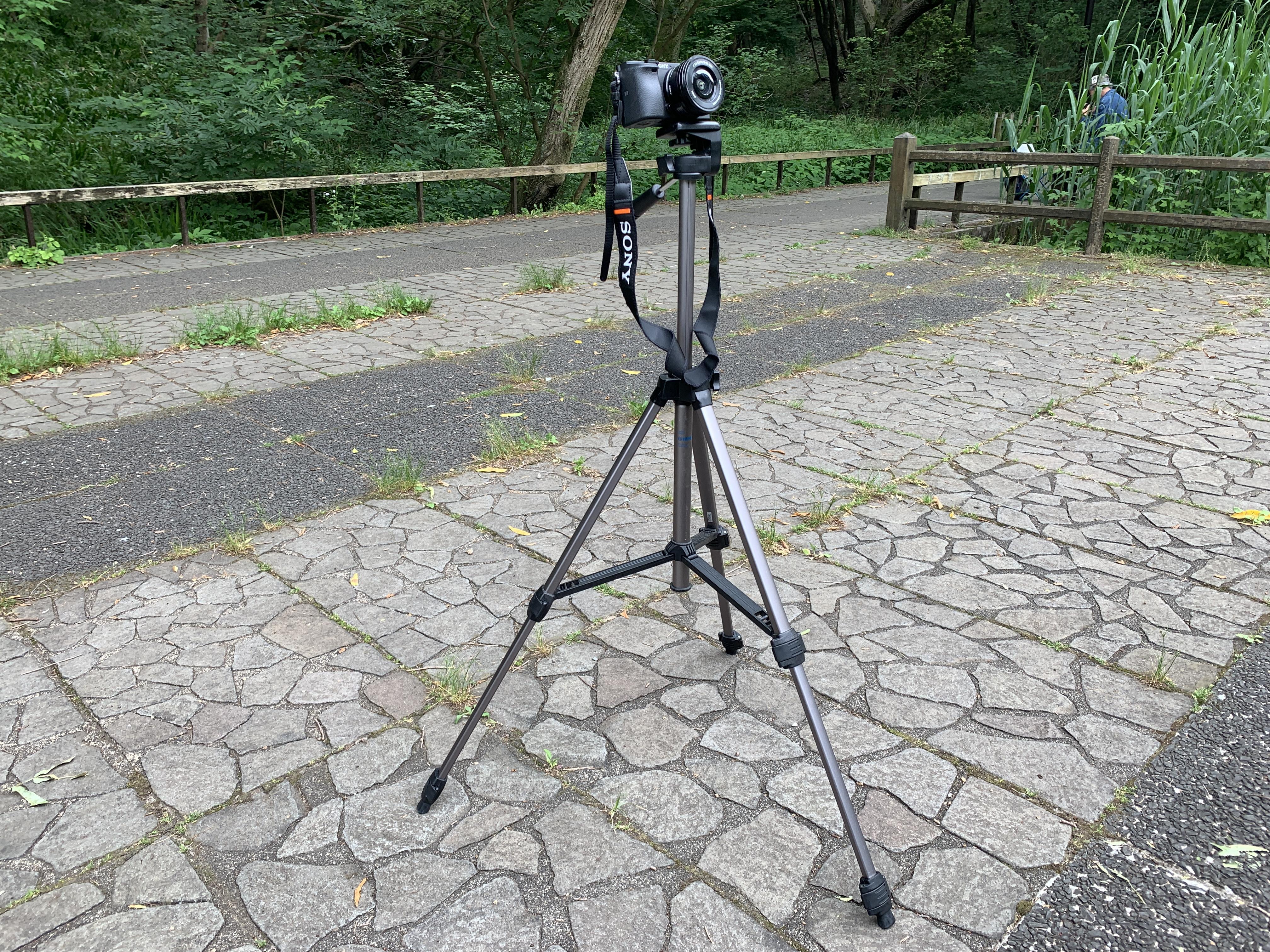 【Vlog】KITレンズで無双する海外映像師がヤバい