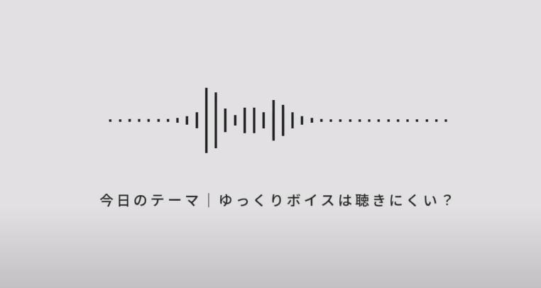 【聴きにくい?】ひろゆき氏の言及に学ぶゆっくり解説・実況の作り方